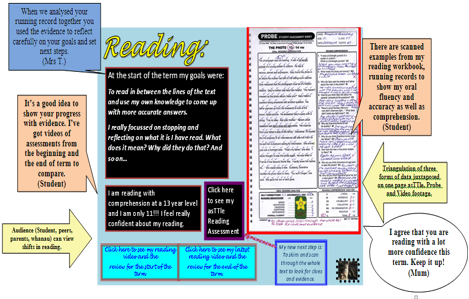 Image of e-portfolio reading example.
